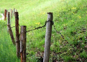 meadow-345757_1280-2